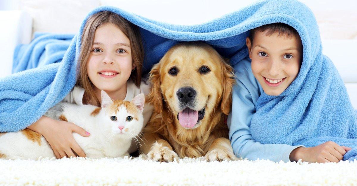 Çocuklar İçin En İyi Evcil Hayvanlar
